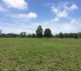 FINCA de 40 hectáreas – APROVECHE-MUY BONITA