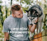 Curso ONline de Entrenamiento Canino