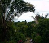 Playa Hermosa (Osa, Puntarenas) COSTA RICA