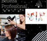 Curso dE Belleza Profesional